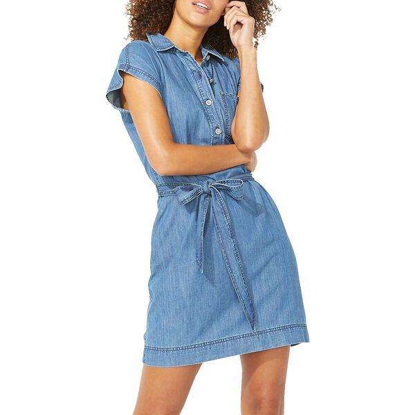 Ultimate Popover Denim Dress